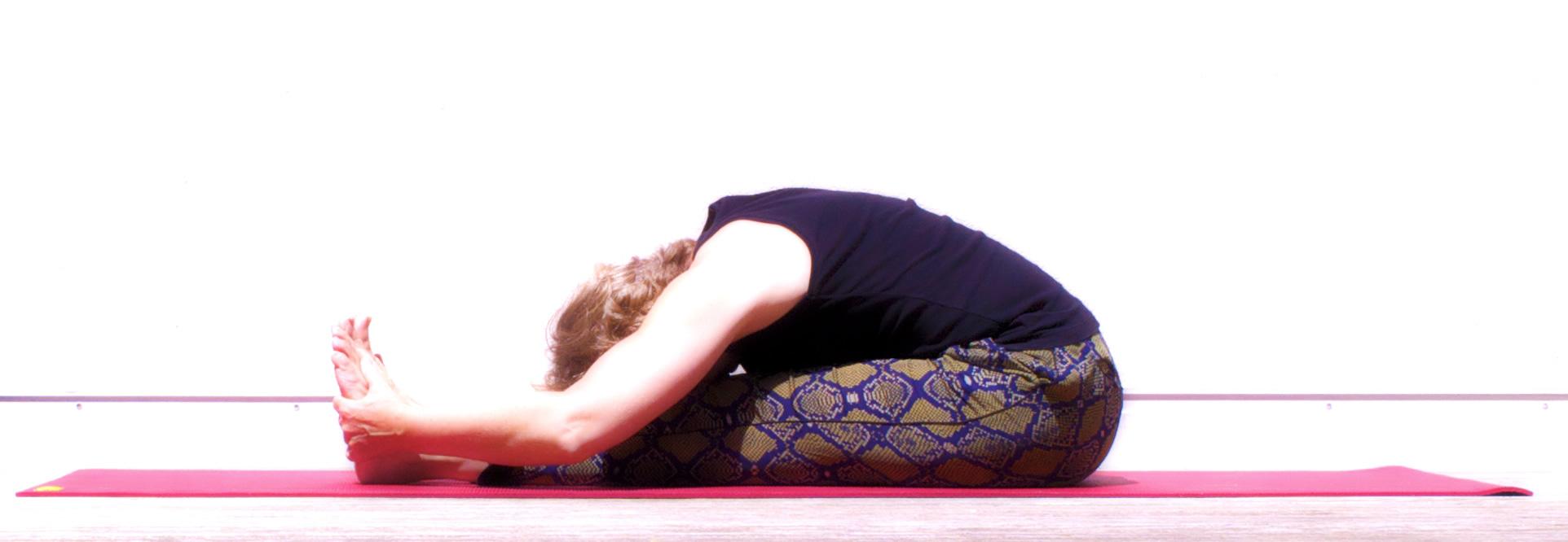 yoga la rochelle cours yoga la rochelle